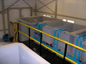 станция биологической очистки 4